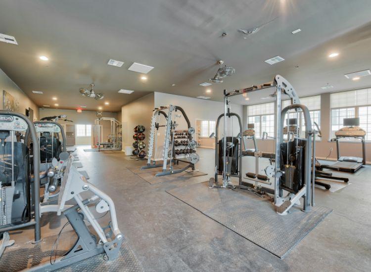 gym, workout equipment